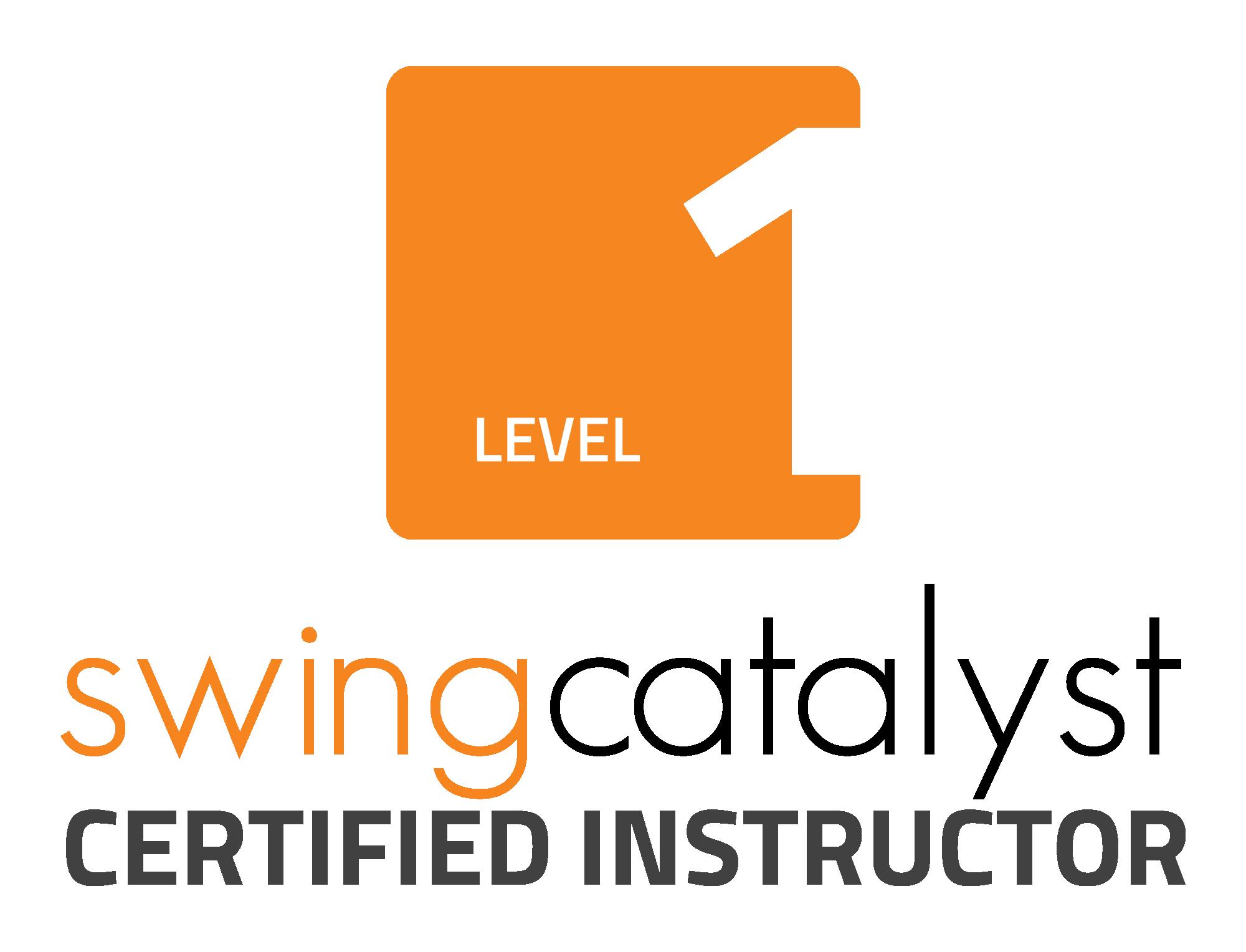 Image result for swing catalyst logo